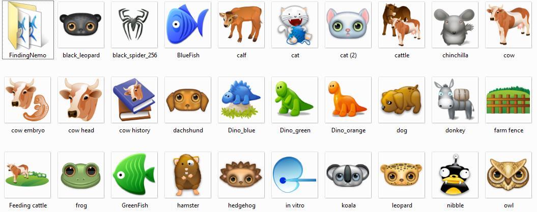 icon avatar icon hewan icon bendera icon box